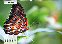 Nahe dem BodenAT-Version (Wandkalender 2019 DIN A2 quer) - Produktdetailbild 5