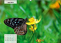 Nahe dem BodenAT-Version (Wandkalender 2019 DIN A2 quer) - Produktdetailbild 6