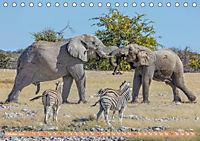 Namibia, afrikanisches Abenteuer (Tischkalender 2019 DIN A5 quer) - Produktdetailbild 10