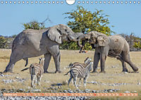 Namibia, afrikanisches Abenteuer (Wandkalender 2019 DIN A4 quer) - Produktdetailbild 10