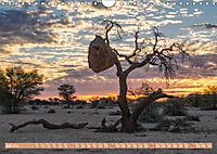 Namibia, afrikanisches Abenteuer (Wandkalender 2019 DIN A4 quer) - Produktdetailbild 7