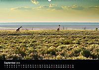 Namibia: Ein Traum von sanftem Licht und unendlicher Weite (Wandkalender 2019 DIN A2 quer) - Produktdetailbild 9