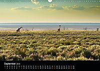 Namibia: Ein Traum von sanftem Licht und unendlicher Weite (Wandkalender 2019 DIN A3 quer) - Produktdetailbild 9