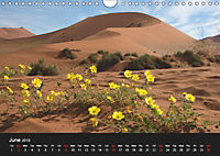 Namibia Highlights / UK-Version (Wall Calendar 2019 DIN A4 Landscape) - Produktdetailbild 6