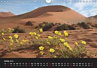 Namibia Highlights / UK-Version (Wall Calendar 2019 DIN A4 Landscape) - Produktdetailbild 6