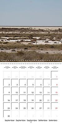 Namibia Landscape Impressions (Wall Calendar 2019 300 × 300 mm Square) - Produktdetailbild 9