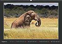 Namibia - Tiere zur Regenzeit 2019 (Wandkalender 2019 DIN A2 quer) - Produktdetailbild 8
