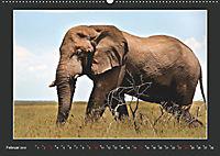 Namibia - Tiere zur Regenzeit 2019 (Wandkalender 2019 DIN A2 quer) - Produktdetailbild 2