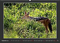 Namibia - Tiere zur Regenzeit 2019 (Wandkalender 2019 DIN A2 quer) - Produktdetailbild 9