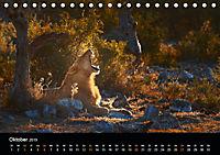 Namibia - weites, wildes Land (Tischkalender 2019 DIN A5 quer) - Produktdetailbild 10