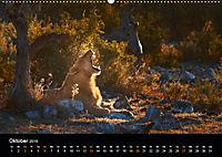 Namibia - weites, wildes Land (Wandkalender 2019 DIN A2 quer) - Produktdetailbild 10