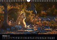 Namibia - weites, wildes Land (Wandkalender 2019 DIN A4 quer) - Produktdetailbild 10