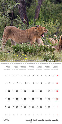 Namibia - Wonders of Nature (Wall Calendar 2019 300 × 300 mm Square) - Produktdetailbild 8