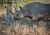 Nashörner - Afrikas seltene Dickhäuter (Tischkalender 2019 DIN A5 quer) - Produktdetailbild 6