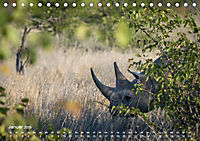 Nashörner - Afrikas seltene Dickhäuter (Tischkalender 2019 DIN A5 quer) - Produktdetailbild 1