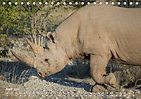 Nashörner - Afrikas seltene Dickhäuter (Tischkalender 2019 DIN A5 quer) - Produktdetailbild 4