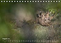 Nashörner - Afrikas seltene Dickhäuter (Tischkalender 2019 DIN A5 quer) - Produktdetailbild 8