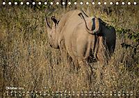 Nashörner - Afrikas seltene Dickhäuter (Tischkalender 2019 DIN A5 quer) - Produktdetailbild 10