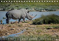 Nashörner - Afrikas seltene Dickhäuter (Tischkalender 2019 DIN A5 quer) - Produktdetailbild 5