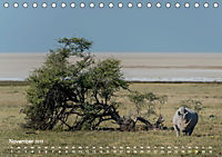 Nashörner - Afrikas seltene Dickhäuter (Tischkalender 2019 DIN A5 quer) - Produktdetailbild 11