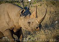 Nashörner - Afrikas seltene Dickhäuter (Wandkalender 2019 DIN A3 quer) - Produktdetailbild 7