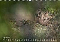 Nashörner - Afrikas seltene Dickhäuter (Wandkalender 2019 DIN A3 quer) - Produktdetailbild 8