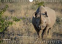 Nashörner - Afrikas seltene Dickhäuter (Wandkalender 2019 DIN A4 quer) - Produktdetailbild 2
