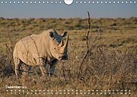 Nashörner - Afrikas seltene Dickhäuter (Wandkalender 2019 DIN A4 quer) - Produktdetailbild 12