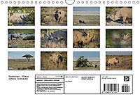 Nashörner - Afrikas seltene Dickhäuter (Wandkalender 2019 DIN A4 quer) - Produktdetailbild 13