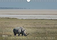 Nashörner - Afrikas seltene Dickhäuter (Wandkalender 2019 DIN A4 quer) - Produktdetailbild 3