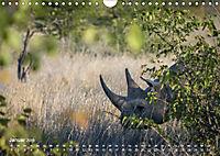 Nashörner - Afrikas seltene Dickhäuter (Wandkalender 2019 DIN A4 quer) - Produktdetailbild 1