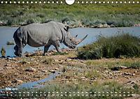 Nashörner - Afrikas seltene Dickhäuter (Wandkalender 2019 DIN A4 quer) - Produktdetailbild 5
