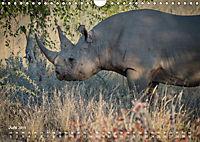 Nashörner - Afrikas seltene Dickhäuter (Wandkalender 2019 DIN A4 quer) - Produktdetailbild 6