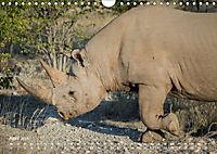 Nashörner - Afrikas seltene Dickhäuter (Wandkalender 2019 DIN A4 quer) - Produktdetailbild 4
