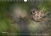 Nashörner - Afrikas seltene Dickhäuter (Wandkalender 2019 DIN A4 quer) - Produktdetailbild 8