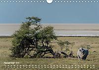 Nashörner - Afrikas seltene Dickhäuter (Wandkalender 2019 DIN A4 quer) - Produktdetailbild 11