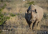 Nashörner - Afrikas seltene Dickhäuter (Wandkalender 2019 DIN A2 quer) - Produktdetailbild 2