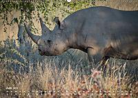 Nashörner - Afrikas seltene Dickhäuter (Wandkalender 2019 DIN A2 quer) - Produktdetailbild 6