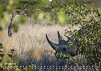 Nashörner - Afrikas seltene Dickhäuter (Wandkalender 2019 DIN A2 quer) - Produktdetailbild 1