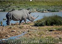 Nashörner - Afrikas seltene Dickhäuter (Wandkalender 2019 DIN A2 quer) - Produktdetailbild 5