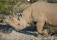 Nashörner - Afrikas seltene Dickhäuter (Wandkalender 2019 DIN A3 quer) - Produktdetailbild 4