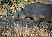 Nashörner - Afrikas seltene Dickhäuter (Wandkalender 2019 DIN A3 quer) - Produktdetailbild 6