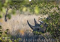 Nashörner - Afrikas seltene Dickhäuter (Wandkalender 2019 DIN A3 quer) - Produktdetailbild 1