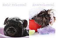 Nasse Tiere - Produktdetailbild 2