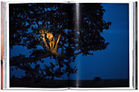 National Geographic. In 125 Jahren um die Welt. Afrika - Produktdetailbild 4