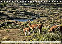 Nationalpark Torres del Paine, eine Traumlandschaft (Tischkalender 2019 DIN A5 quer) - Produktdetailbild 3