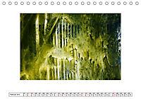 NATÜRLICH BUNT (Tischkalender 2019 DIN A5 quer) - Produktdetailbild 2