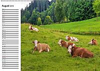 Natur am Tegernsee (Wandkalender 2019 DIN A2 quer) - Produktdetailbild 8