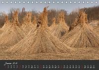 Natur erleben Seewinkel-Neusiedlersee (Tischkalender 2019 DIN A5 quer) - Produktdetailbild 1