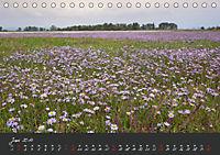 Natur erleben Seewinkel-Neusiedlersee (Tischkalender 2019 DIN A5 quer) - Produktdetailbild 6